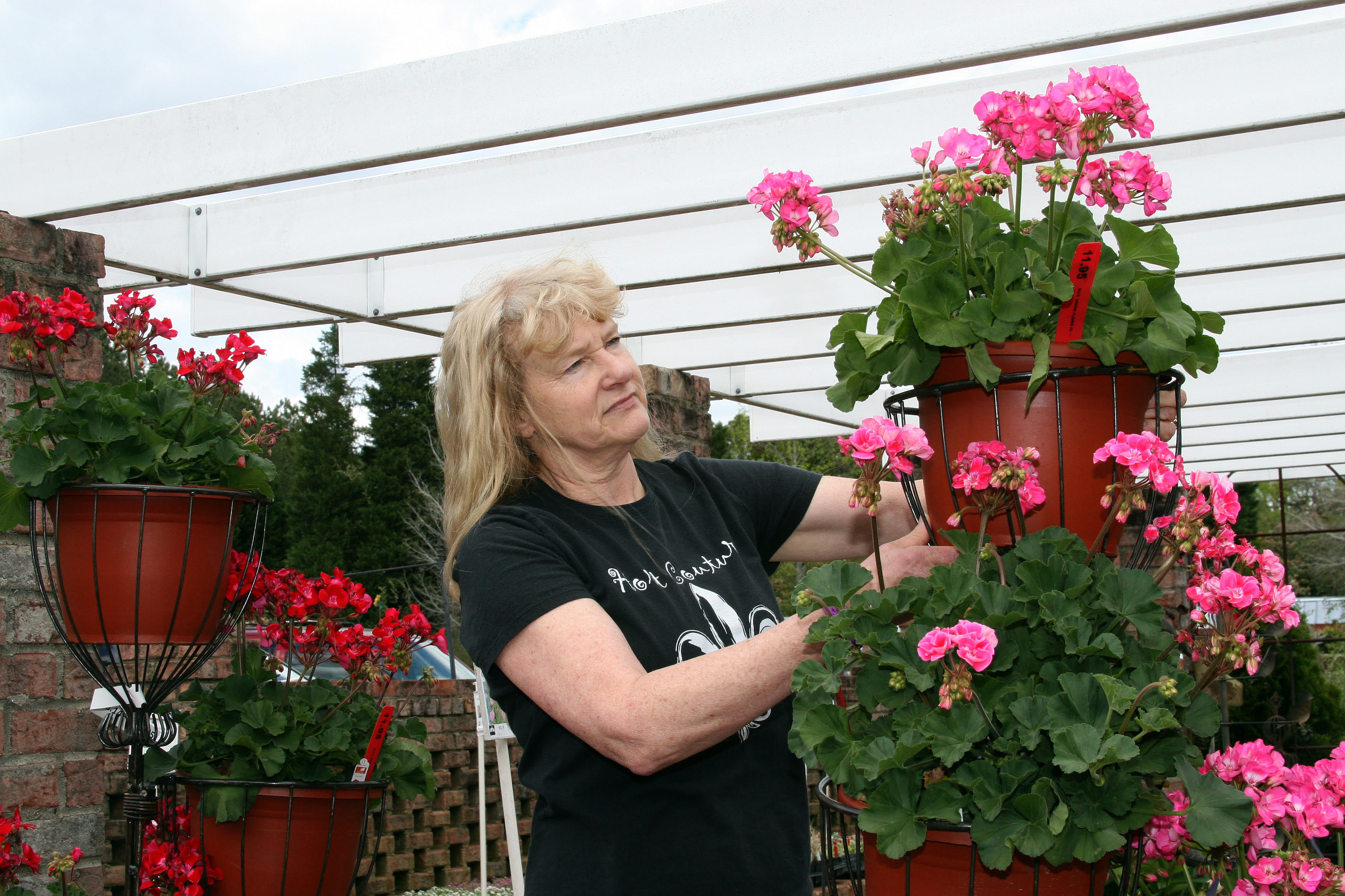 Gail Foushee setting out flower pots