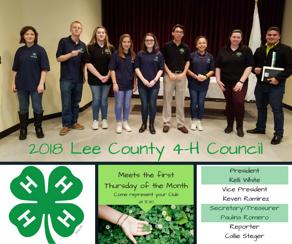 2018 Lee County 4-H Council Photo