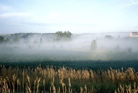 Temperature inversion image