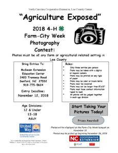 Photo Contest flyer image