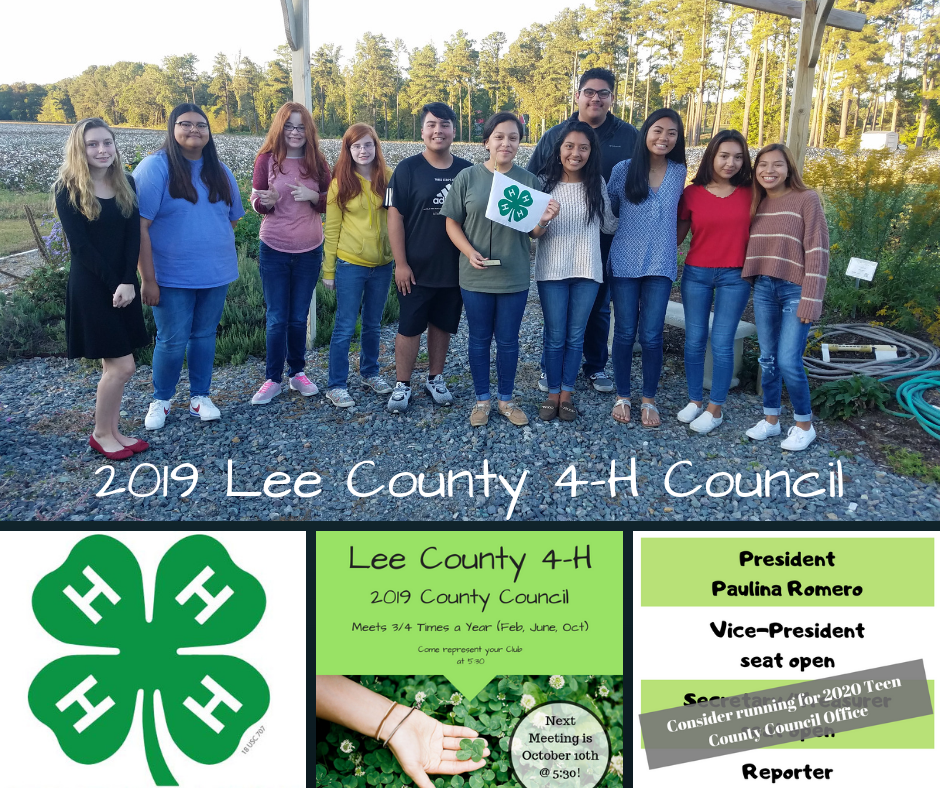 photo of the teen members of County Council