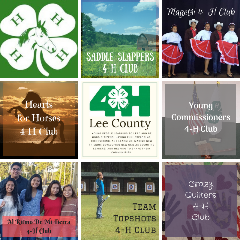 photo poster of lee county clubs