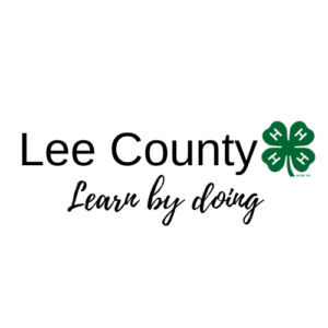 learn by doing at 4-H