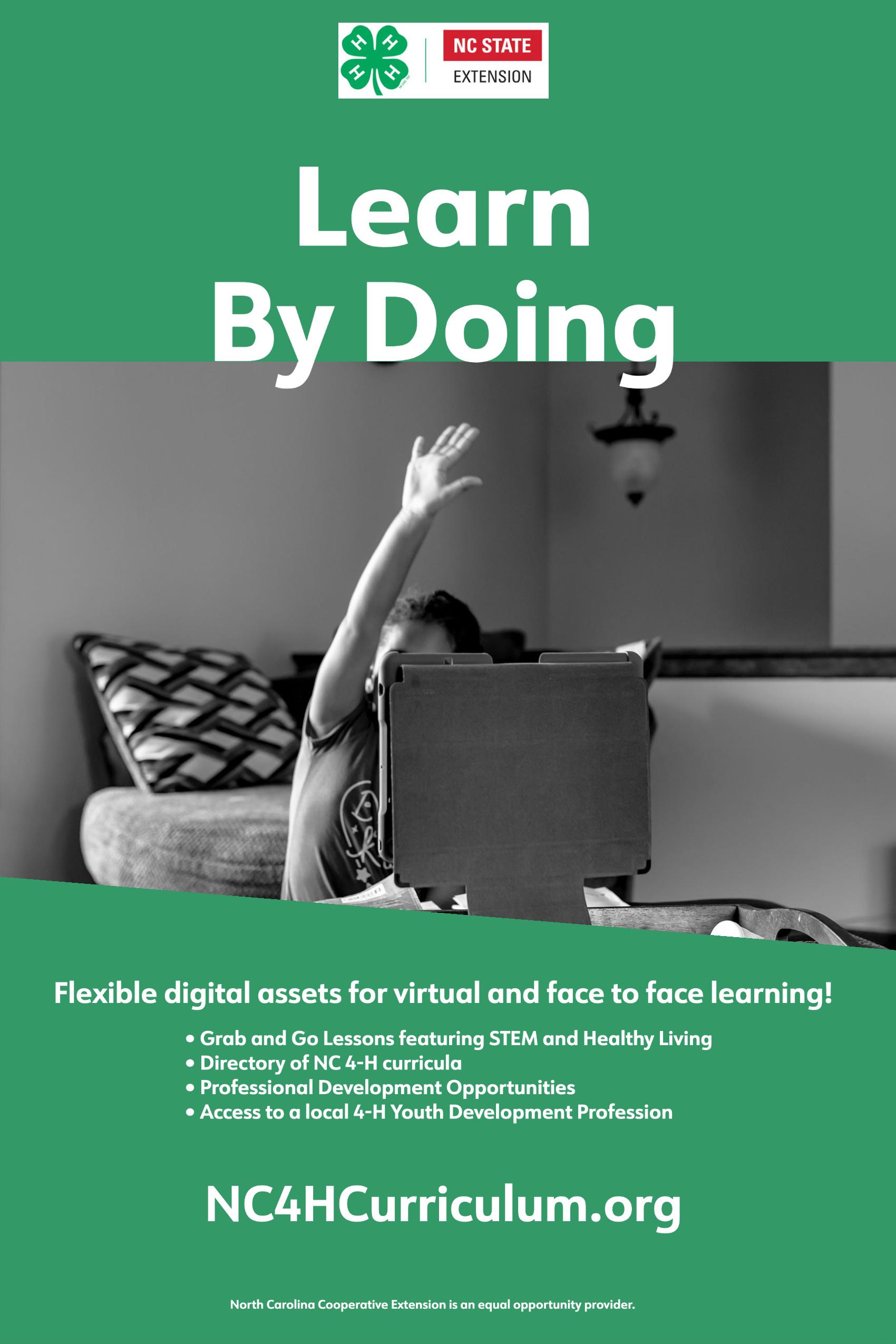 Virtual Curriculum link