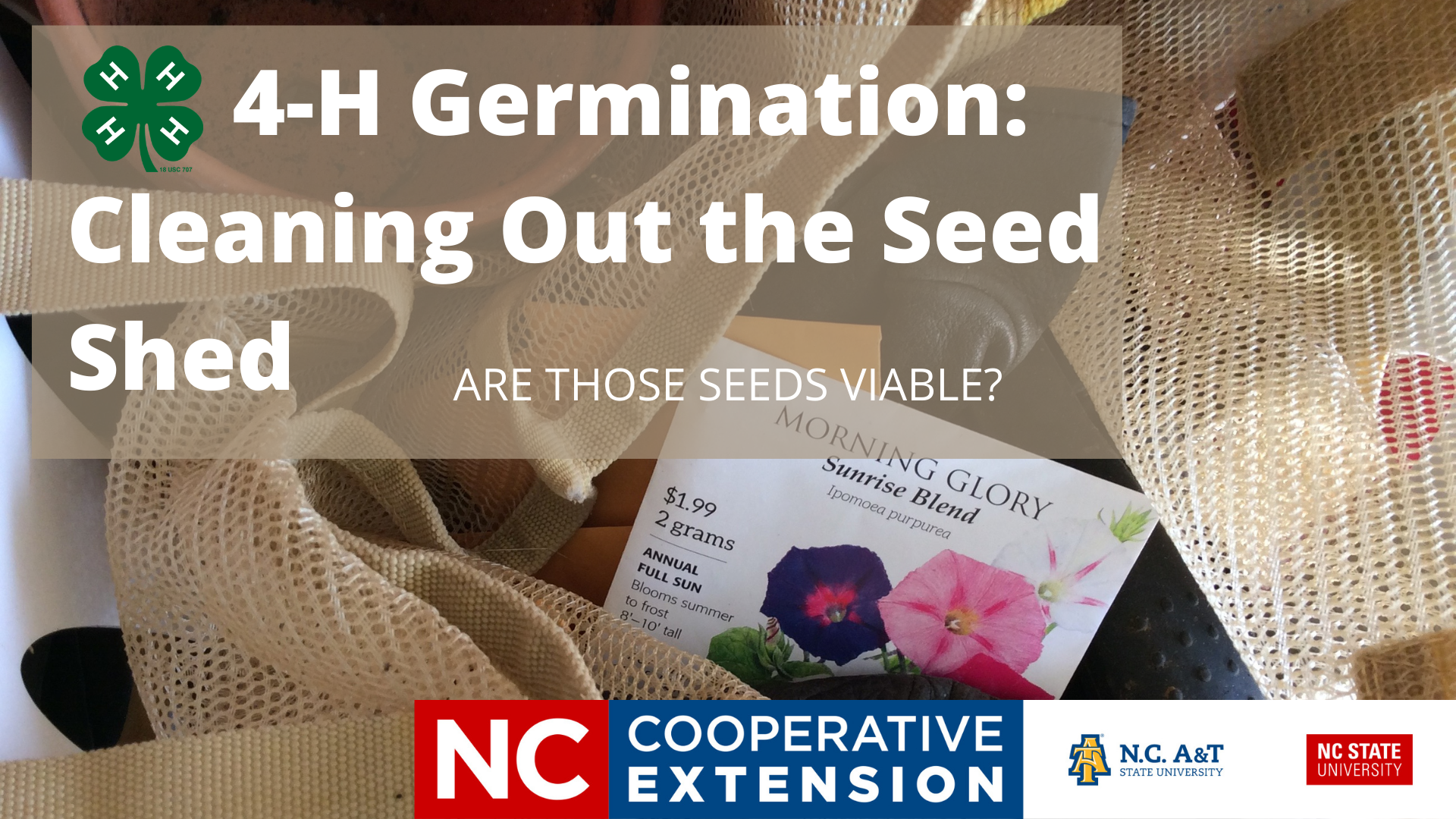 4-H germination cleaning out the seed shed are those seeds viable
