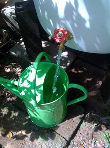 Water spigot filling watering can