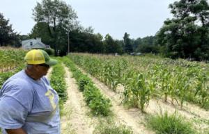 Cover photo for Local Extension Master Gardener Volunteer Recognized